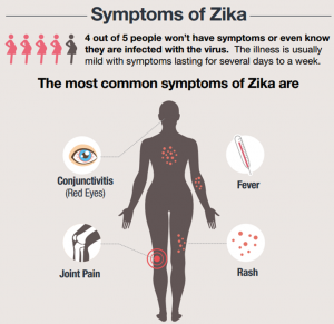 Zika Virus Syptoms